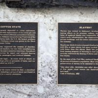 Panel 05 – Cotton State - Detail Image 2